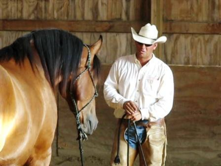 Steve Lantvit with the EquiVibe at a Ranch Horse Show